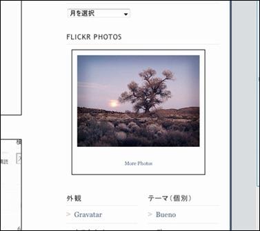 flickr09